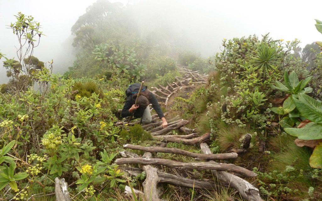 climbing mount sabinyo in Uganda